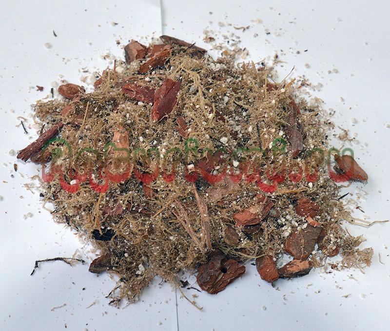 перлит, мох, кора