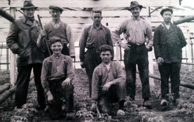 Семейный бизнес Stolk Brothers (Братья Столк)