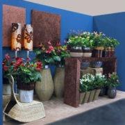 Компания Evanty, цветы антуриум